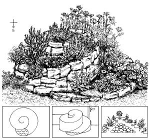 Herb-spiral-design
