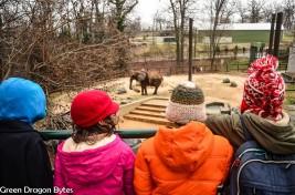 4G-Zoo (15 of 28)