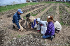 FarmTrip2015-13