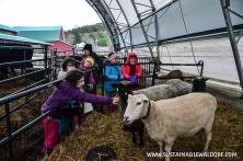 FarmTrip2015-2-20