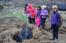 FarmTrip2015-2-61