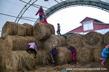 FarmTrip2015-2-65