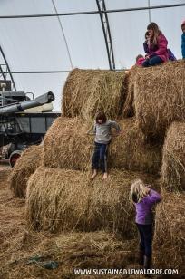 FarmTrip2015-2-67