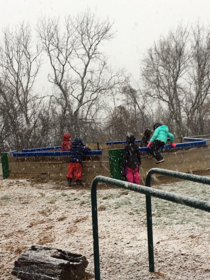 ac snow 1